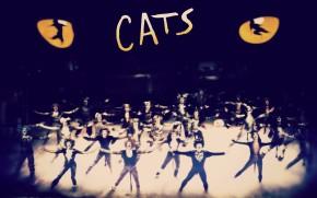 CATS regressa a Lisboa em Outubro
